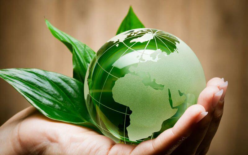 Vuoi diventare Esperto Ambientale? Guarda il Master Online di Gestione Ambientale